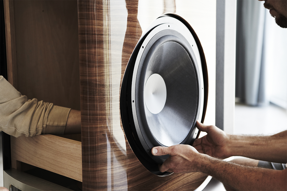 The Sonus Faber SE